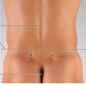 Low Back Pain. Causes, Treatment and Treatment Options for low back pain